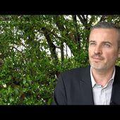 Emmanuel Pierrat - Les francs-maçons sous l'Occupation, entre résistance et collaboration