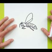 Como dibujar una avispa paso a paso | How to draw a wasp