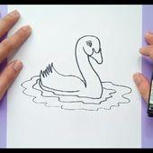 Como dibujar un cisne paso a paso | How to draw a swan