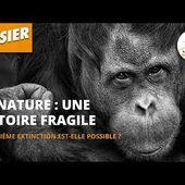 La Nature : une histoire fragile - Dossier #15 - L'Esprit Sorcier