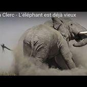 Julien Clerc - L'éléphant est déjà vieux