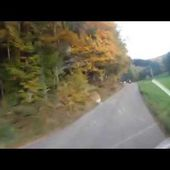 Goldwing - Lahr ballade d'octobre 2015 15