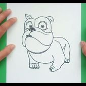 Como dibujar un perro paso a paso 38 | How to draw a dog 38