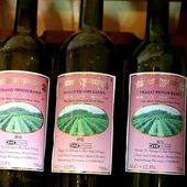 The most bizarre wine in the world! Cambodian red wine produced in a khmer winery