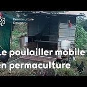 permaculture.poulailler mobile.MOV