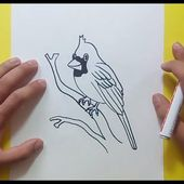 Como dibujar un pajaro paso a paso 6 | How to draw a bird 6