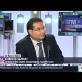 Interview BFM Business - Charles Sannat - Déflation en zone euro - Intégrale Placements 03/10/2014