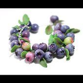 DIY bracelets Tutorials - Handmade Polymer Clay Blueberry Bracelet