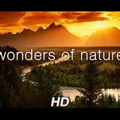 Wonders of Nature, Relaxation, HD
