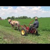 Testing The I&j Ground Drive Sickle Bar Mower With One Norwegian Fjord Horse