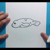 Como dibujar una foca paso a paso | How to draw a seal