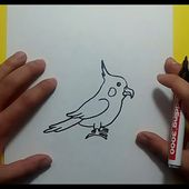Como dibujar un pajaro paso a paso 2 | How to draw a bird 2