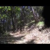 vtt course et chute de saint jean montclar par les papy riders 2015