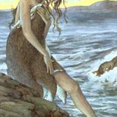 The Maiden and the Selkie