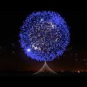 ►Le plus beau feu d'artifice du monde (4)◄