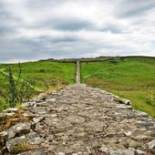 Heritage crime concern on Hadrian's Wall because of illegal digging