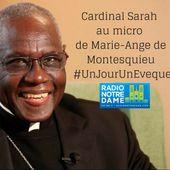 Cardinal SARAH - Version Longue by Radio Notre Dame