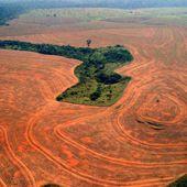Armel nous a parlé du capitalisme et de sa dynamique de destruction écologique