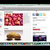 How to Get Powerful Backlinks to Rank Your Website in Google using this Cool FREE tool