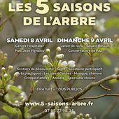 Les 5 Saisons de l'Arbre