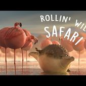 ROLLIN` SAFARI - what if animals were round?