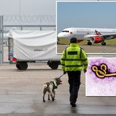 Ebola terror at Gatwick as Sierra Leone flight passenger dies