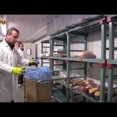 Vente de viande française en ligne - Terre de Viande