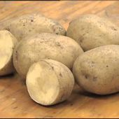 Gardening in the Zone: Planting Potatoes