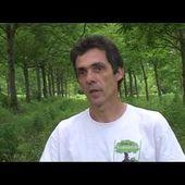Casdar SMART / Agroforesterie Maraichère - Association Française d'agroforesterie