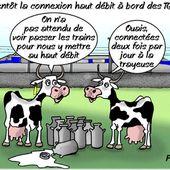 la vache et le TGV... - Le Réveil ...