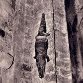 Le crocodile de Saint-Bertrand de Comminges (31). - Lieux secrets du Pays Cathare- Secrets places of Cathar Land