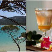 * Tapenade express &amp&#x3B; Cocktail St Tropez * - Emilie Cuisine - Blog Culinaire ♥