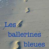 J'ai découvert Les ballerines bleues de %displayName% sur Iggybook http://catherine-lang.iggybook.com/fr/les-ballerines-bleues/