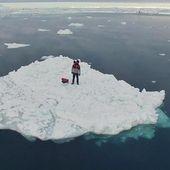VIDEO. Bretagne: Guirec et sa poule Monique sont toujours au Groenland