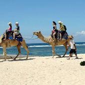 Transport, destination, logement... Décrivez-nous votre budget de vacances d'été