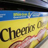 Empiler des Cheerios sur la tête de ses enfants, le nouveau challenge venu du Web
