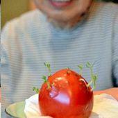 Fukushima : Les transformations inquiétantes des légumes, fruits, fleurs et animaux exposés aux radiations