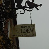 DOMAINE LOEW, WESTHOFFEN