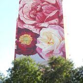 Le mur des Roses - le blog docroger