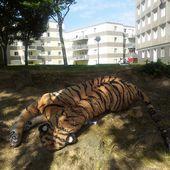 Dieppe : un tigre retrouvé mort au Val Druel - Jyvais à Dieppe...et même ailleurs !