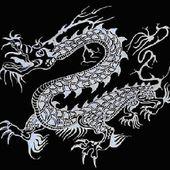 Tai ji quan et symbolisme :le dragon 1 - ASSOCIATION LE BAMBOU
