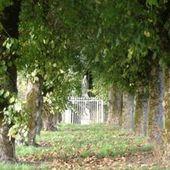 L'ancienne fontaine guérisseuse de sainte Rodhène, à Levroux, dans l'Indre