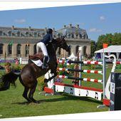 Champions Global Tour of Chantilly : black horse - Images du Beau du Monde