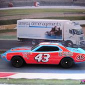74 DODGE CHARGER HOT WHEELS 1/64 NASCAR RICHARD PETTY CEREAL GENERAL MILLS - car-collector.net