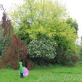 a4. Les visites de jardins et fêtes des plantes