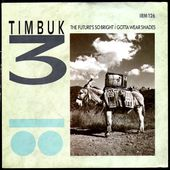 timbuk 3 - the future's so bright i gonna wear shades - l'oreille cassée