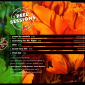 young marble giants - Nita - John Peel Show - BBC Radio1 - l'oreille cassée
