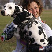 Maratona del Lamone 2014. Podisti fanatici e ignoranti affermano: Ti fai trainare dal cane (Alina Losurdo) - Ultramaratone, maratone e dintorni