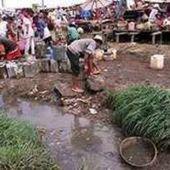 Madagascar : apparition de la peste et... - Voix Africaine
