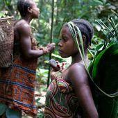 Violations des droits humains : Survival International porte plainte contre une organisation de protection de la nature | Afrique: développement durable et environnement